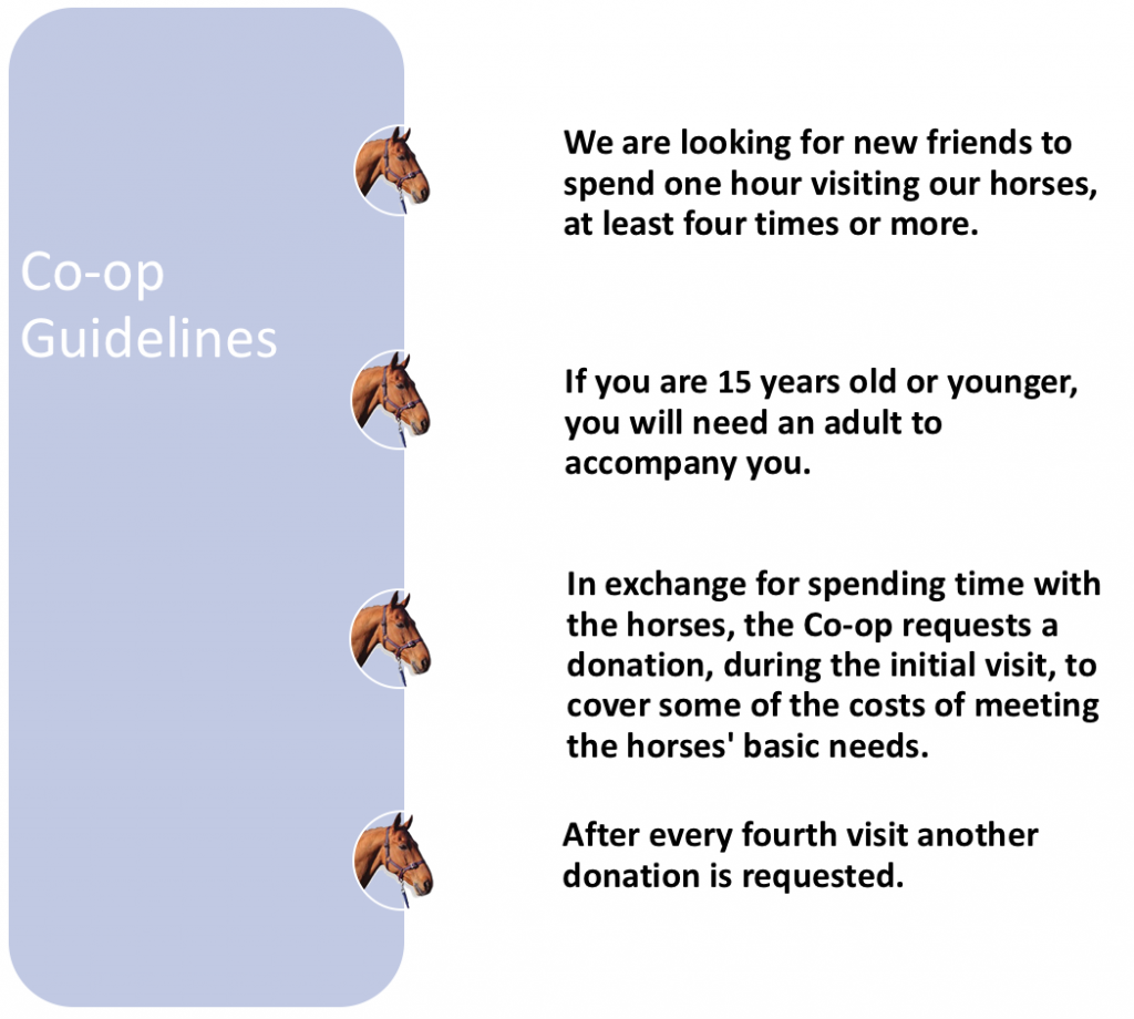 Co-op_guidelines_image